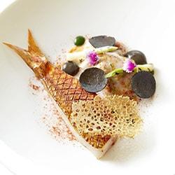 Coquillages et crustacés de Méditerranée - Arnaud Faye - La Chèvre d'Or