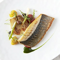 Grilled sea bass filet, fennel with tomatoes and olive oil - Restaurant les Remparts