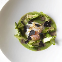 Green asparagus with egg cooked in low temperature, truffle dressing - Restaurant les Remparts